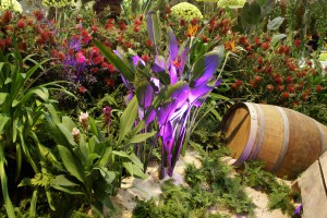 Les Floralies de Nantes(12)